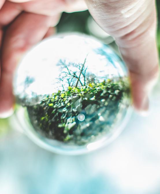 June 2020: Exploring Environmental Diplomacy
